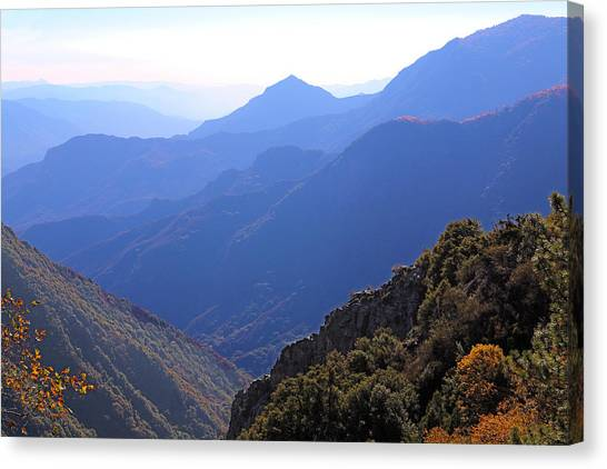 View From Moro Rock Canvas Print