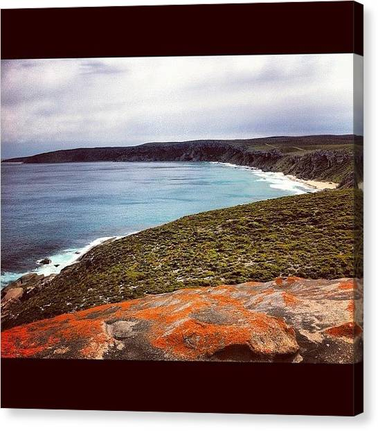 Kangaroo Canvas Print - View From Remarkable Rocks by Andrew Coulson