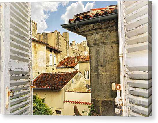 Cognac Canvas Print - View In Cognac by Elena Elisseeva