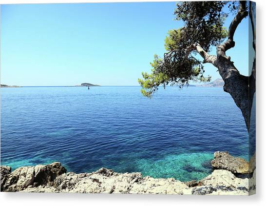 View Of Dubrovnik From Cavtat Peninsula Canvas Print