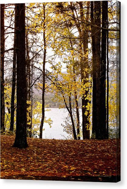 View Of  Lake Mcdonald Canvas Print