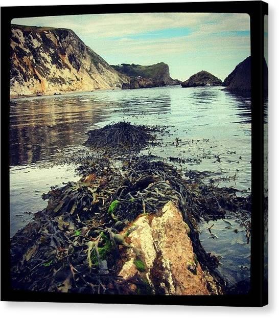 Beach Cliffs Canvas Print - View Over Water by Marian Farkas