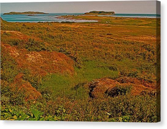 Viking Landing Point At L'anse Aux Meadows-nl Canvas Print