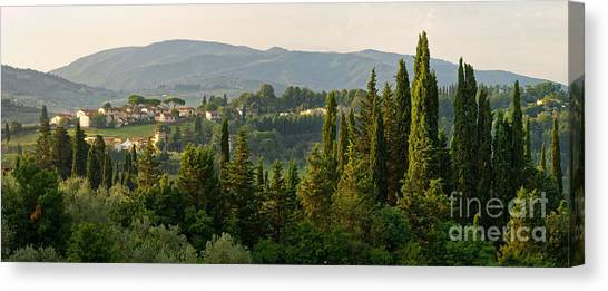 Village And Cypresses Canvas Print
