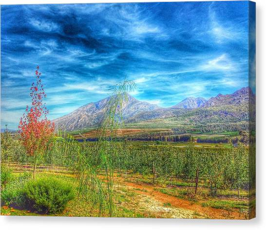South African Canvas Print - Villiersdorp Farm by Christian Smit