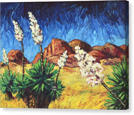 Vincent In Arizona Canvas Print