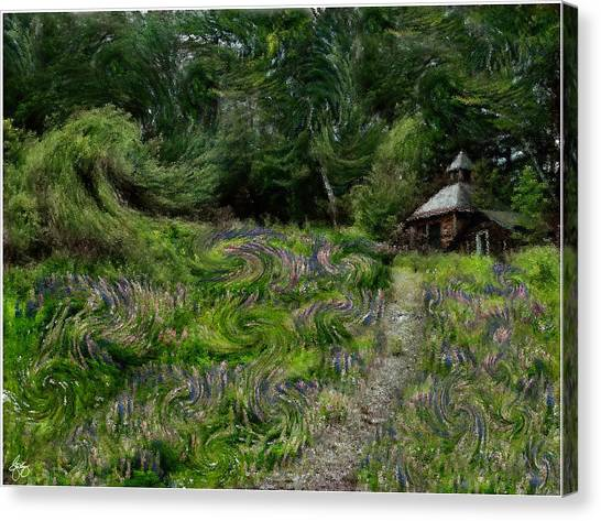 A Lupine Tale  Vincents View Canvas Print