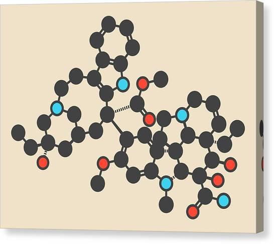 Mitosis Canvas Print - Vindesine Cancer Drug Molecule by Molekuul