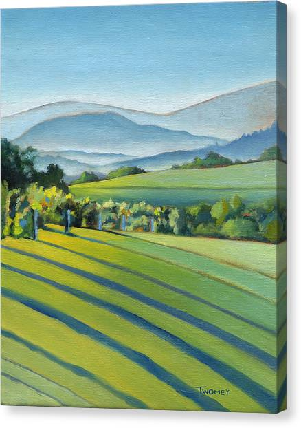 Plein Air Canvas Print - Vineyard Blue Ridge On Buck Mountain Road Virginia by Catherine Twomey