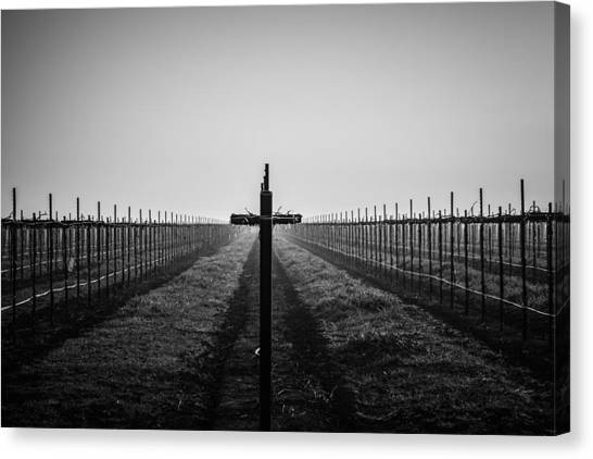 Vineyard Cross Canvas Print