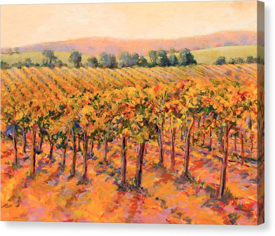 Vineyard Gold Canvas Print by B J  Stapen