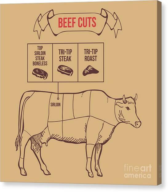 Vintage Butcher Cuts Of Beef Scheme Canvas Print by Dimair