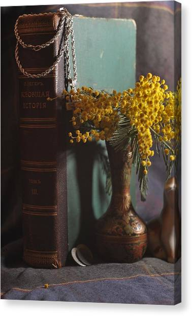 Mimosa Canvas Print - Vintage Group With An Old Book And Mimosa   by Anna Aybetova