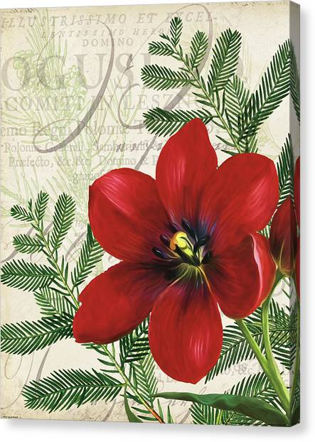 Vintage Noel IIi Canvas Print by Katie Pertiet