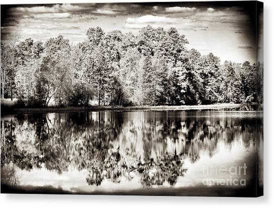 Vintage Pine Barrens Canvas Print by John Rizzuto