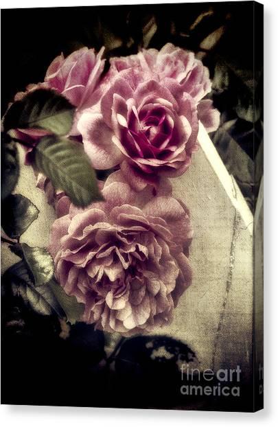 Vintage Pink Sisters Canvas Print
