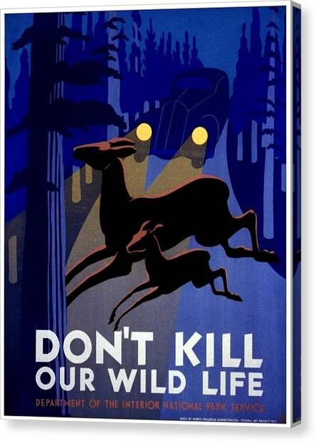 Vintage Canvas Print - Vintage Poster - Don't Kill Our Wild Life by Benjamin Yeager