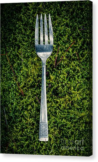 Mossy Forest Canvas Print - Vintage Silver Fork On Moss by Edward Fielding