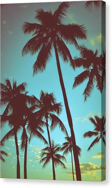 Hawaii Canvas Print - Vintage Tropical Palms by Mr Doomits
