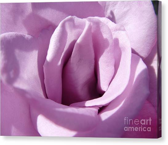 Violet Light Canvas Print by Anat Gerards