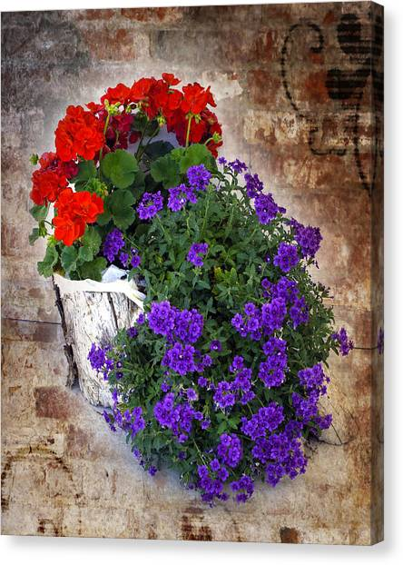 Canvas Print featuring the photograph Violets And Geraniums On The Bricks by William Havle