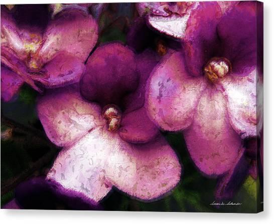 Violets No. 2 Canvas Print