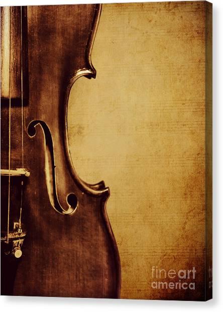 Violin Canvas Print - Violin Portrait  by Emily Kay