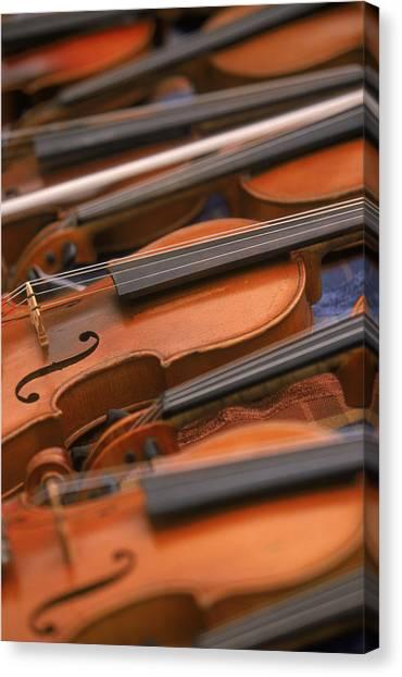 Violins Canvas Print
