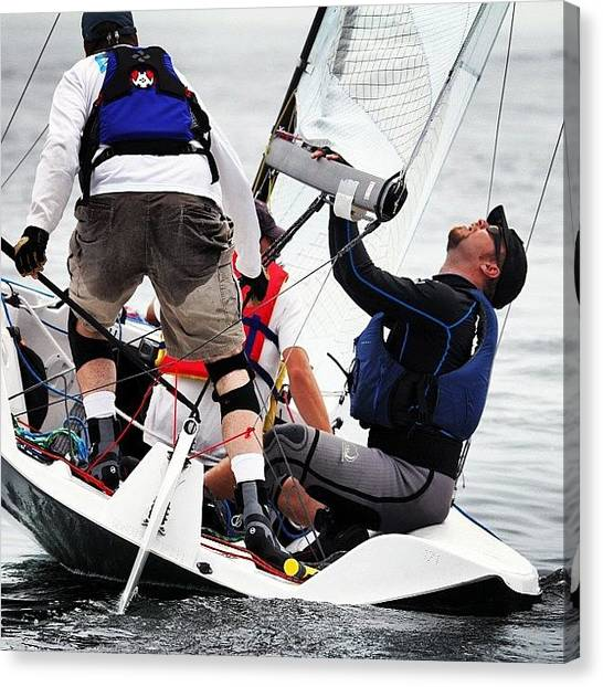 Vipers Canvas Print - #viper #sailing #action #marblehead by Leighton OConnor