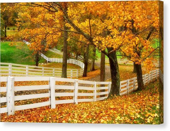 Virginia Horse Country Canvas Print