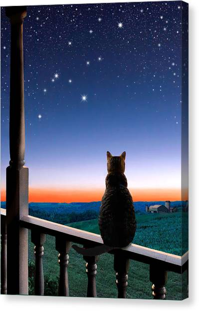 Manx Cats Canvas Print - Virgo At Dawn's Light by Kathleen Horner