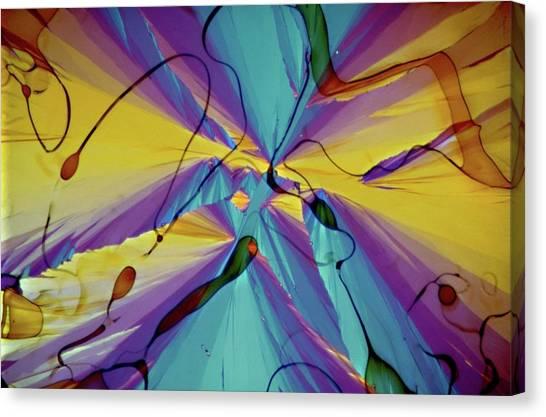 Vitamin E Crystals Canvas Print by Dennis Kunkel Microscopy/science Photo Library