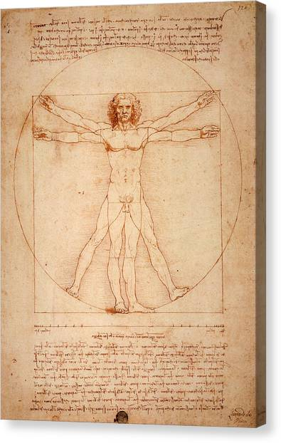 Vitruvian Man Canvas Print