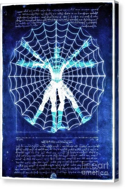 Vitruvian Spiderman White In The Sky Canvas Print