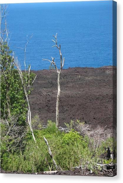 Volcano Rocks - Ile De La Reunion - Reunion Island Canvas Print by Francoise Leandre