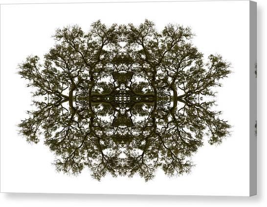 Tropical Stain Glass Canvas Print - Voodoo Mask by Debra and Dave Vanderlaan