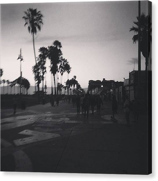 Santa Monica Canvas Print - Venice Beach by Cesar Ochoa