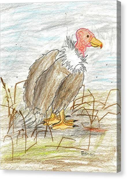 Vulture Canvas Print by Ethan Chaupiz