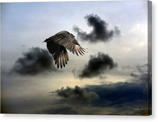 Vulture Sky Canvas Print