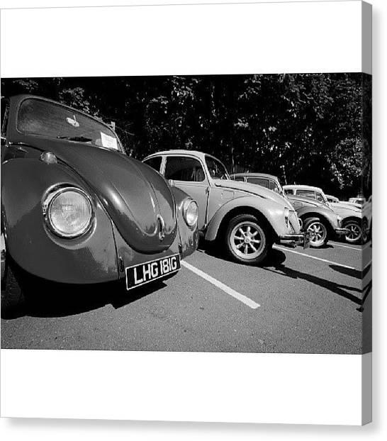 Beetles Canvas Print - #vw #vwt1 #vwbug #volkswagen #vwlove by Phil Day