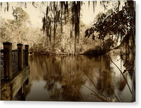Waccamaw River In Autumn Sepia Canvas Print