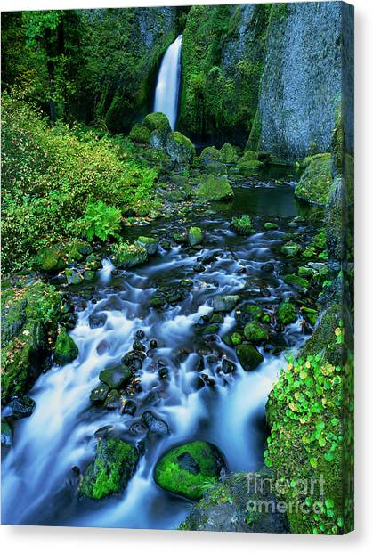 Nsa Canvas Print - Wachlella Falls Columbia River Gorge National Scenic Area Oregon by Dave Welling