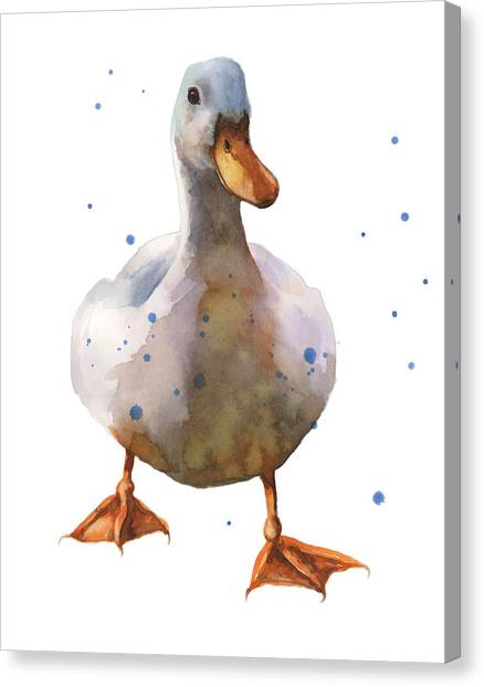 Waddling White Duck Canvas Print by Alison Fennell