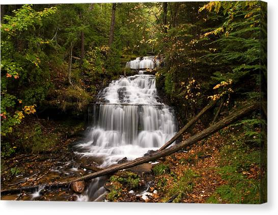 Alger Waterfalls Canvas Print - Wagner  Falls by James Marvin Phelps