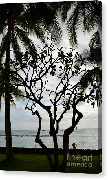 Waikiki Beach Hawaii Canvas Print