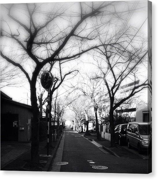 Stormtrooper Canvas Print - Wail In The Street.#street #iphonesia by Saito Hironobu