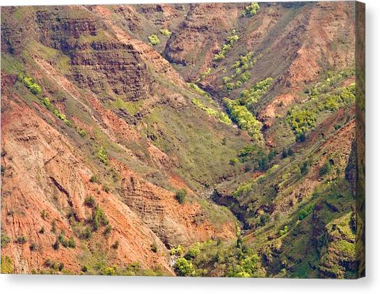Waimea Canyon Abstract Canvas Print