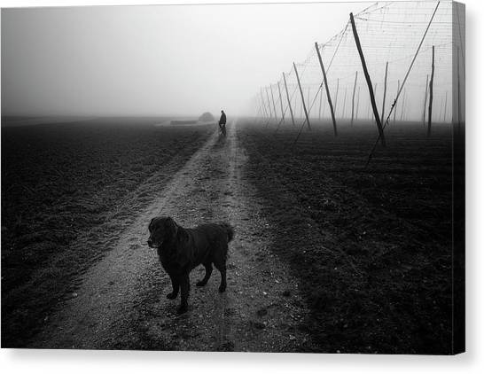 Open Canvas Print - Waiting For A Friend by Jure Kravanja