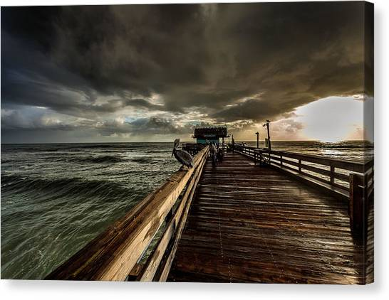 Rainclouds Canvas Print - Waiting For Breakfast by Steven Reed