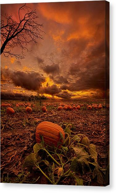 Pumpkin Patch Canvas Print - Waiting For The Great Pumpkin by Phil Koch